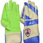 hand-pr-lte-men-gb-0-6-full-wicket-keeping-gloves-shredded-original-imafa9grdzbpc655.jpeg